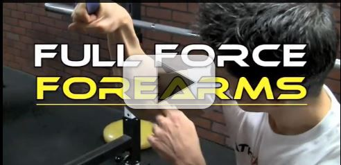 full force forearms workout