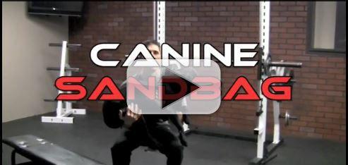 the canine sandbag workout