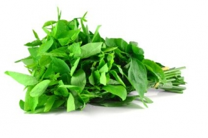 spinach healthy fitness