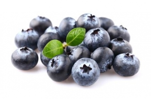 antioxidants for weight loss