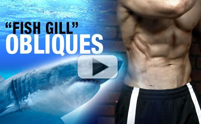 how-to-get-shredded-obliques-gills-one-exercise-yt-pl