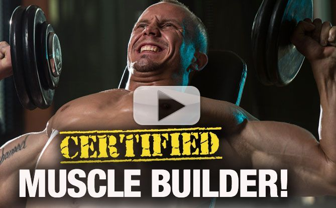 how-to-gain-muscle-yt-40-pl