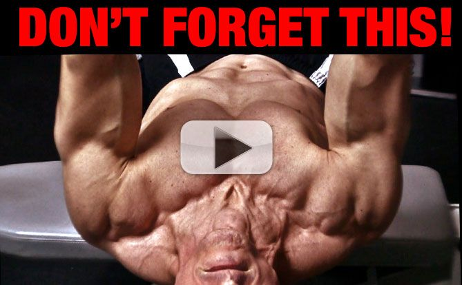 dumbbell-chest-workout-exercise-yt-pl
