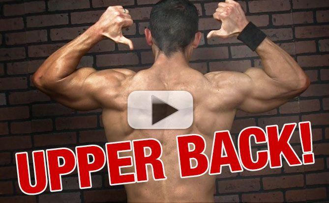 get-a-bigger-upper-back-traps-yt-pl