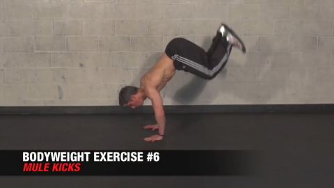 mule kicks bodyweight exercise