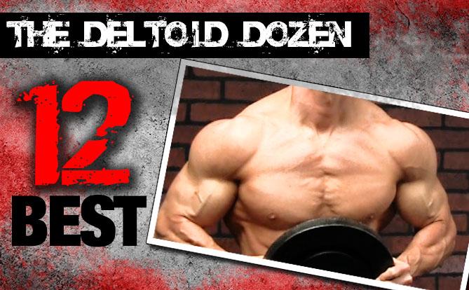 12 best shoulder exercises the deltoid dozen