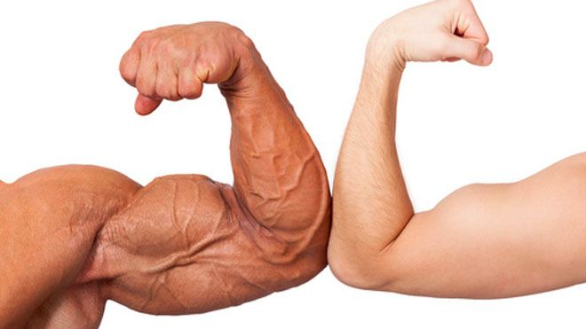 DO NOT READ THIS REPORT IF YOU WANT SMALL BICEPS!