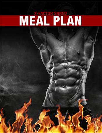 xfactor-meal-plan-shred