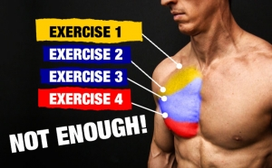 how to construct a complete chest workout