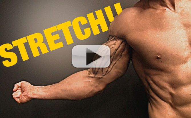 how-to-stretch-your-biceps-for-big-bicep-yt-pl