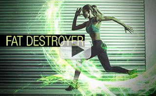 XX_95_Destroyer-pl