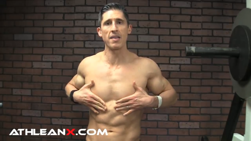 lower chest abdominal head muscle fibers