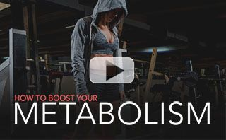 197_xx_metabolism-pl