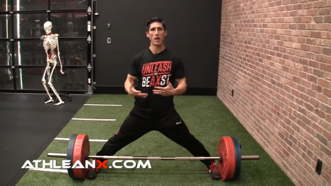 stretch adductors and groin