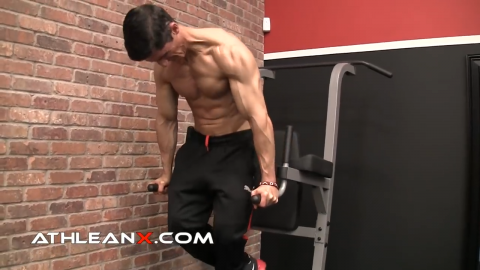 dip plus lower chest exercise