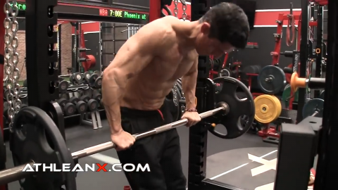 straight bar dip lower chest exercise