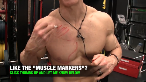 upper chest clavicular fibers pectoral muscle