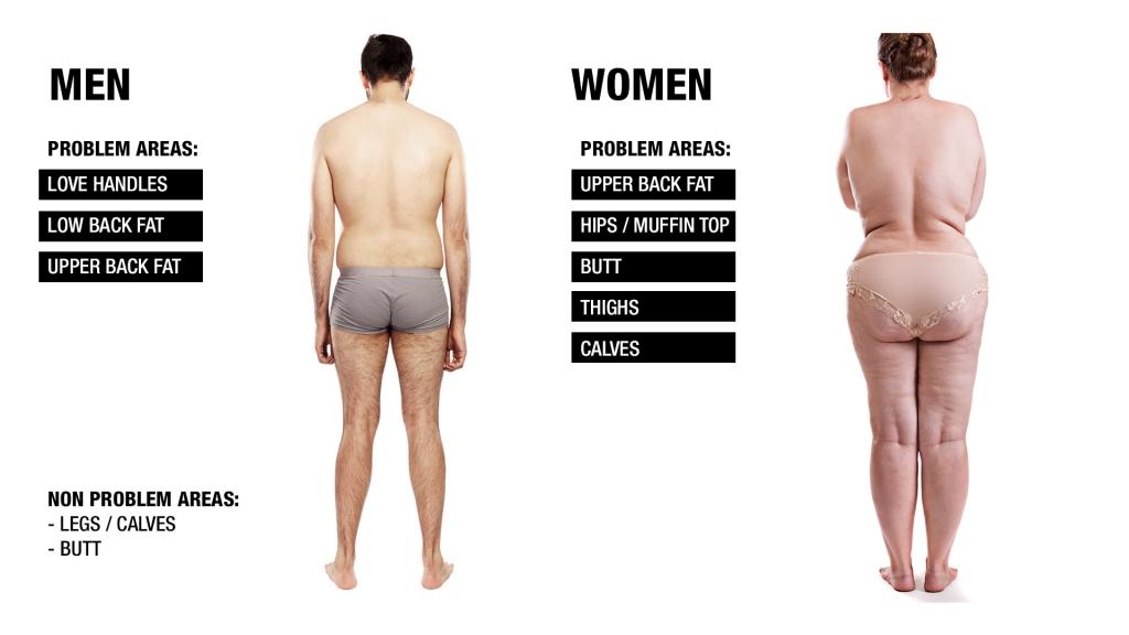 fat storage men vs women