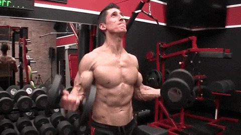 dumbbell biceps curl exercise