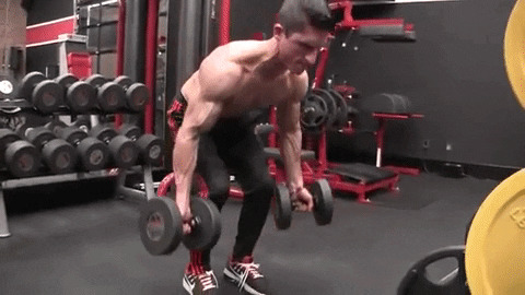 dumbbell underhand dead row exercise
