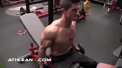 seated dumbbell curl exercise