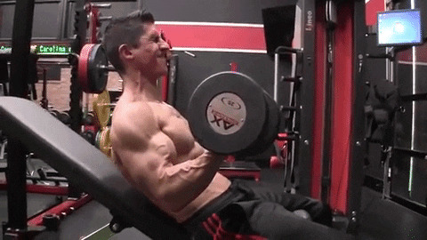 seated lowering dumbbell curl exercise