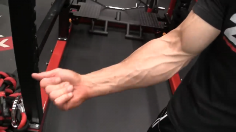 activation of the fingers recruits forearm strength