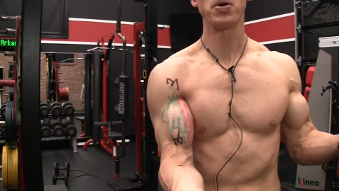 all 3 functions of the biceps