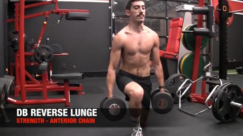 dumbbell reverse lunge