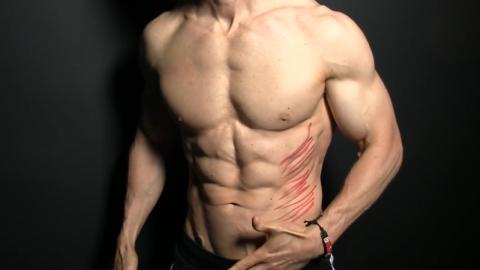 external obliques muscles