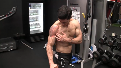 front delt raise shoulder exercise