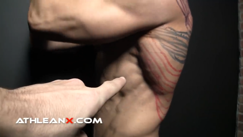lat muscles latissimus dorsi