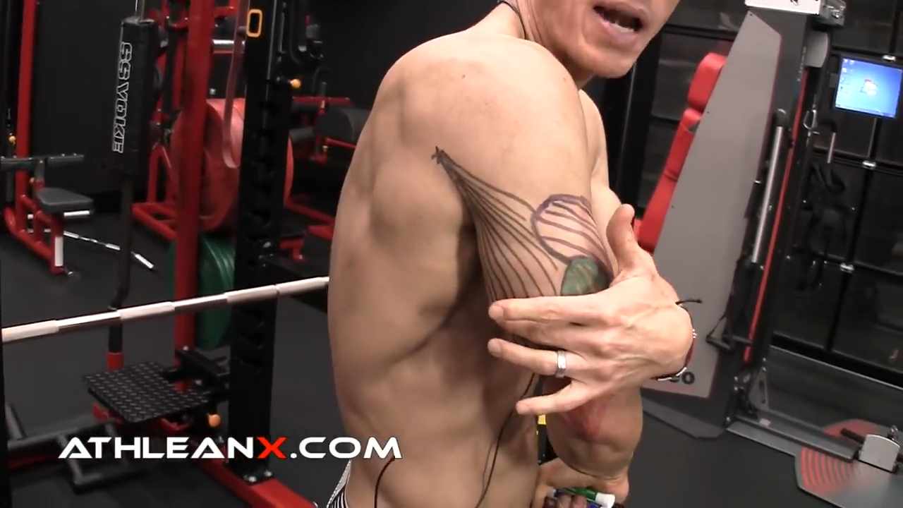 long head of the triceps