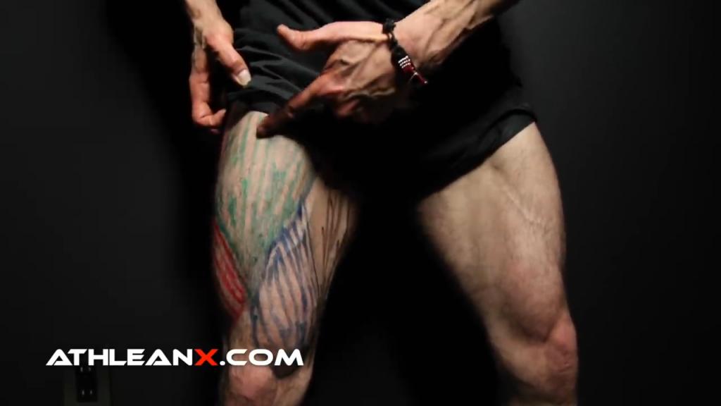 rectus femoris leg muscle