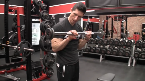 reverse curl forearm exercise