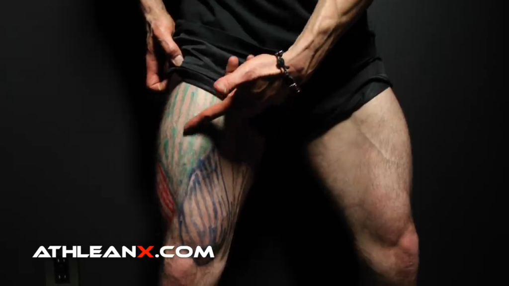 vastus intermedius leg muscle cant be seen but is below the rectus femoris