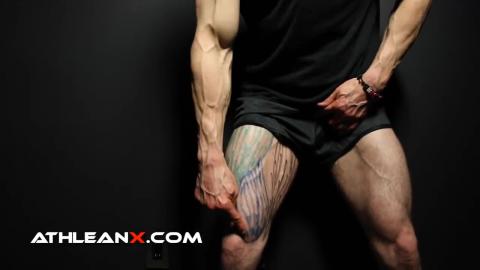 vastus medialis leg muscle