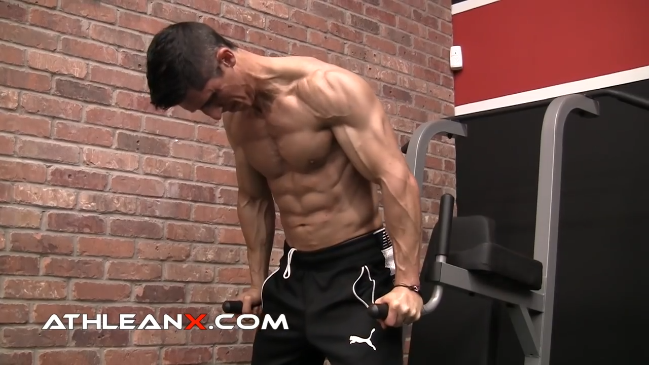 weighted dip chest exercise
