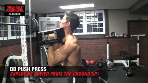 db push press shoulder exercises
