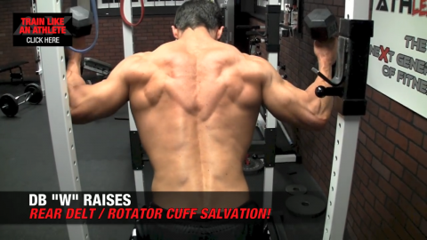 dumbbell w raises for rotator cuff
