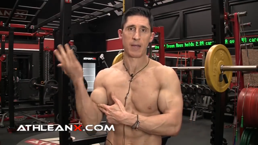 the elbow hinge joint functions to flex and extend the elbow