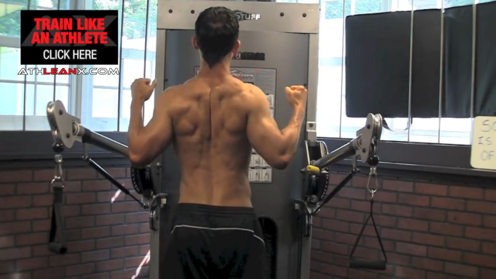 the middle traps pull the shoulder blades back, down and together