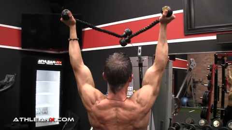 add arm raise into face pulls for lower traps
