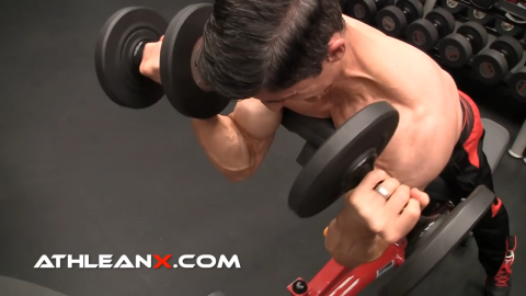 dumbbell spider curls exercise