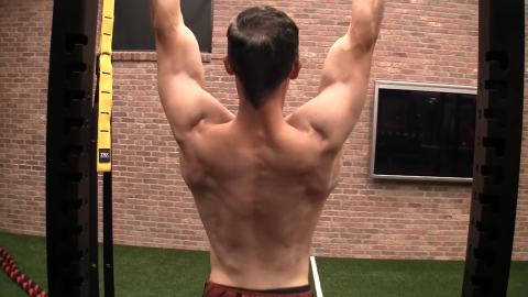 hanging scap pull exercise