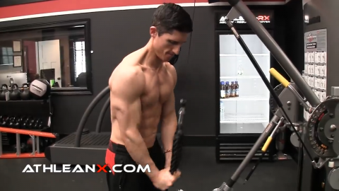 triceps pushdown exercise