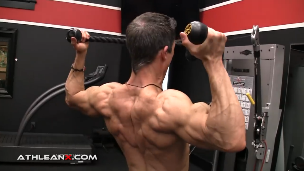 use enough weight in the face pull to challenge your muscles without pulling you forward