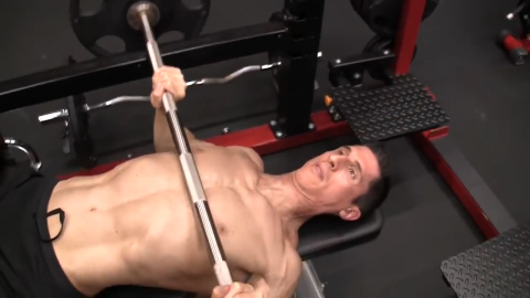 barbell bench press for chest