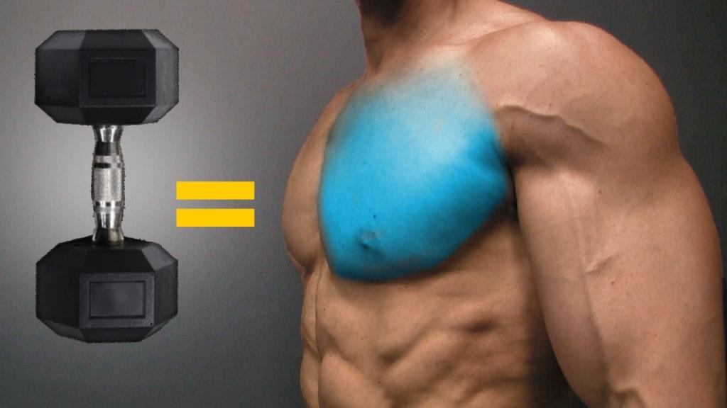 best dumbbell exercises for chest