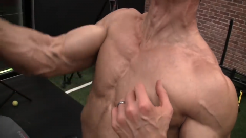 upper chest activation in dumbbell ucv high raise